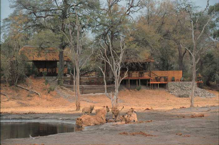 savuti-camp